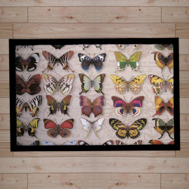 paillasson-papillons