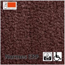 tapis d'entrée paillasson dédié aux ERP pour les PMR.