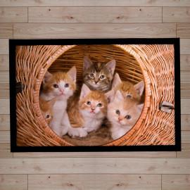 paillasson-décor-chatons