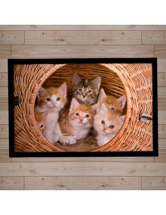 Paillasson décor chatons