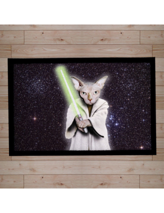Paillasson Pets Star wars